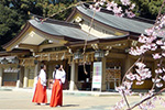 gnavi_japanese_wedding_img4